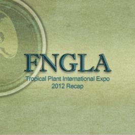 FNGLA/TPIE recap