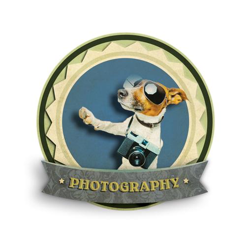 Section-Header-Photos_Alpha copy